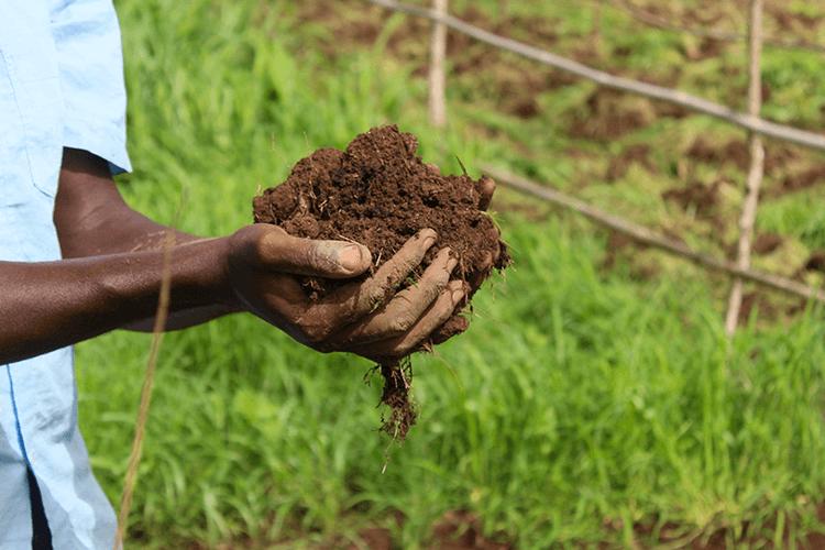 Environnement-Kedougou