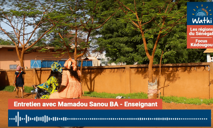 Pour préserver la biodiversité et assurer le développement durable de la localité, l'Etat du Sénégal, avec la collaboration de plusieurs organismes nationaux et internationaux, a créé depuis 2010 la réserve communautaire naturelle de Dindéfelo. Ce territoire a été déclaré en 2012 paysage culturel du patrimoine mondial.