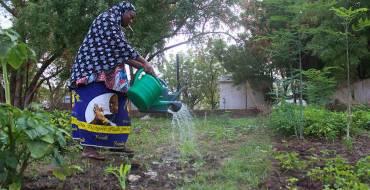 « Nous sommes dans une région où la femme est un acteur économique de taille », Ibrahima Diaby, secrétaire général du conseil départemental de Vélingara